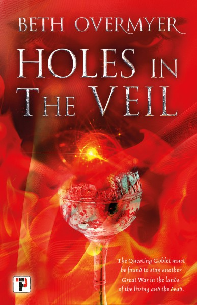 Holes in the Veil cover